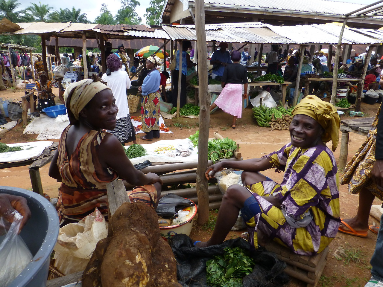 the microfinance market cameroon Economic research-ekonomska istraživanja the introduction of microfinance in cameroon started in 1963 by a the mix market is the most reliable.
