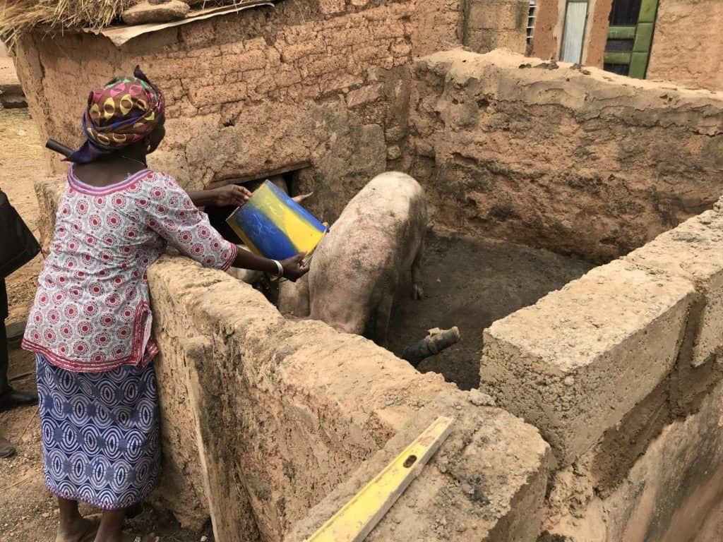 microcredit client livestock Burkina Faso