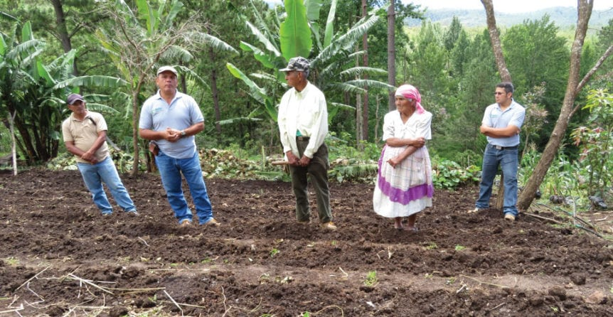 honduras farmers