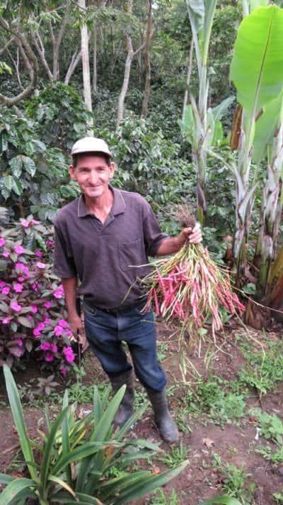 honduras farmer