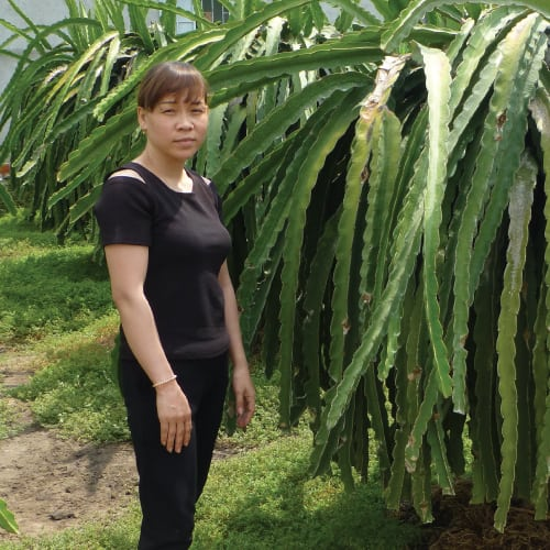 thuy vietname