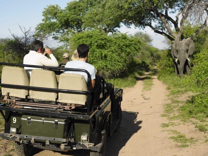 photographer on safari with elephant