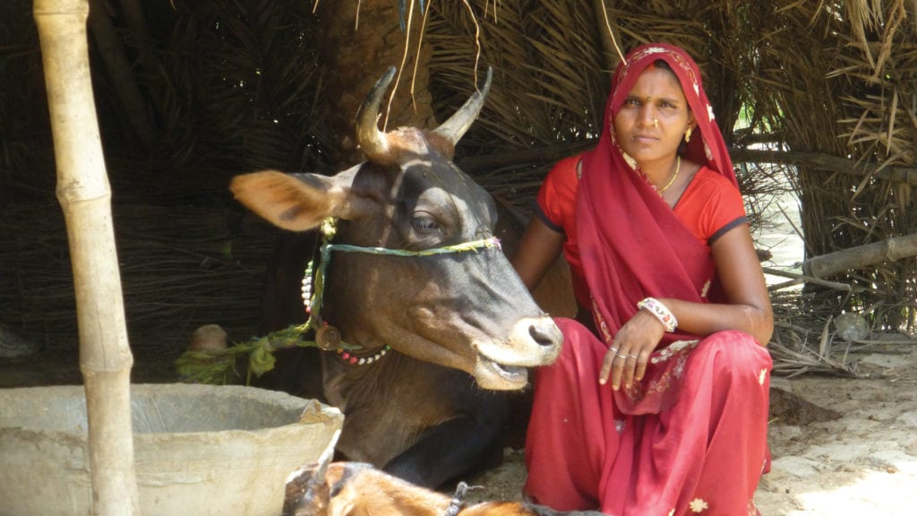kiran is a microcredit client of whole planet foundation partner in india