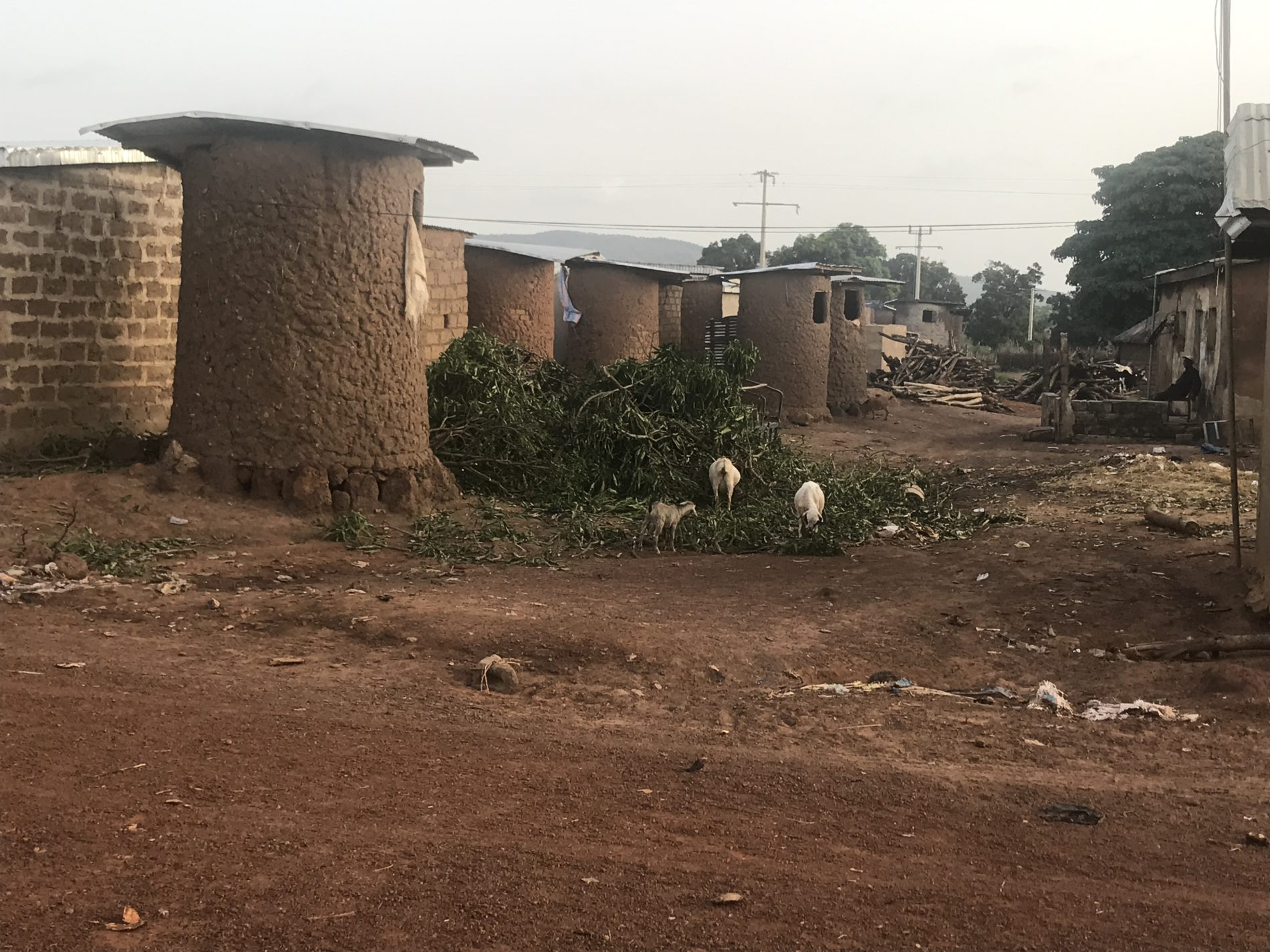rural granaries ivory coast